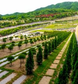 철원수목장 by 하늘세상