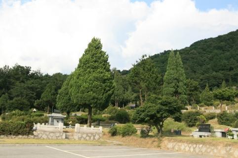 포천묘지 by 하늘세상