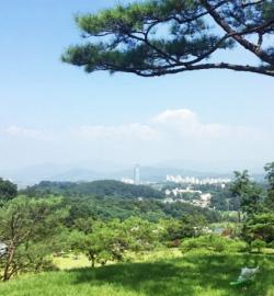 양평수목장 by 하늘세상