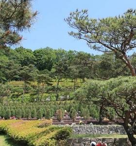 용인 백암수목장 by 하늘세상